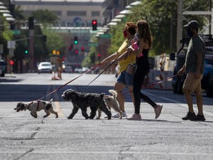 Dog lovers go for a walk in downtown Phoenix on Oct. 21, 2020.