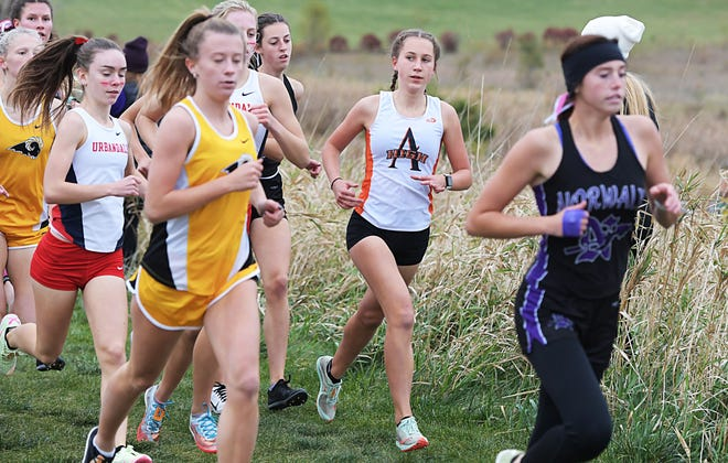 Ames' Sydney Turk battles in a pack in the Class 4A girls' state qualifying cross country race at Southeast Polk High School cross country Course Wednesday in Pleasant Hill. Turk qualified for state after placing 14th.