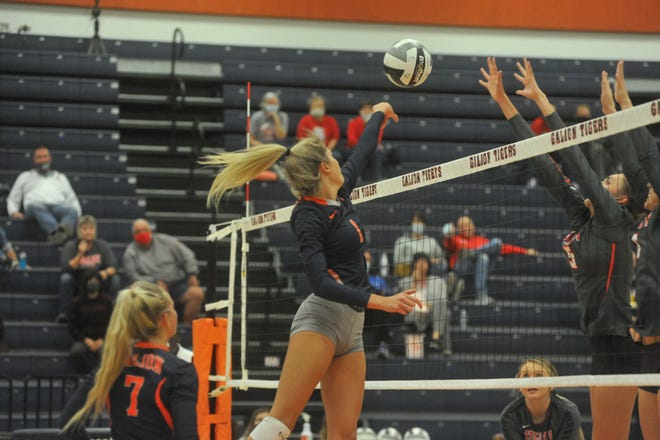 Galion's Samantha Comer was named First Team All-District 6 to go with her First Team All-MOAC.