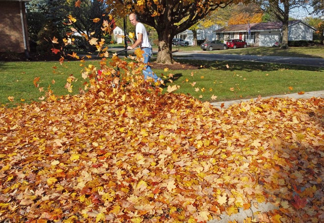 Bill Kuhn uses a blower to move leaves to the curb on Linwood Drive on Thursday.