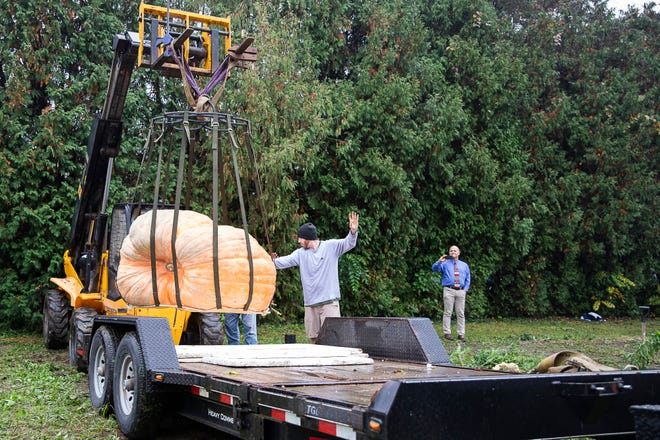 Chillicothe native Rusty Ortman guides a trailer to safely place his 2020 Circleville Pumpkin Show entry. Ortman was one of the youngest winners with a 1,666-pound entry in 2015.