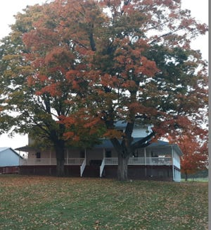Fall colors are showing at the Eicher home, pictured, as leaves begin to fall.