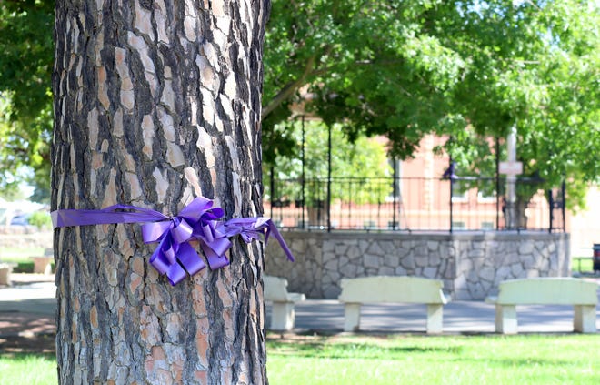 Purple ribbons were tied around trees at Luna County Courthouse Park this month to bring community attention to October as National Domestic Violence Awareness Month in Deming and Luna County.