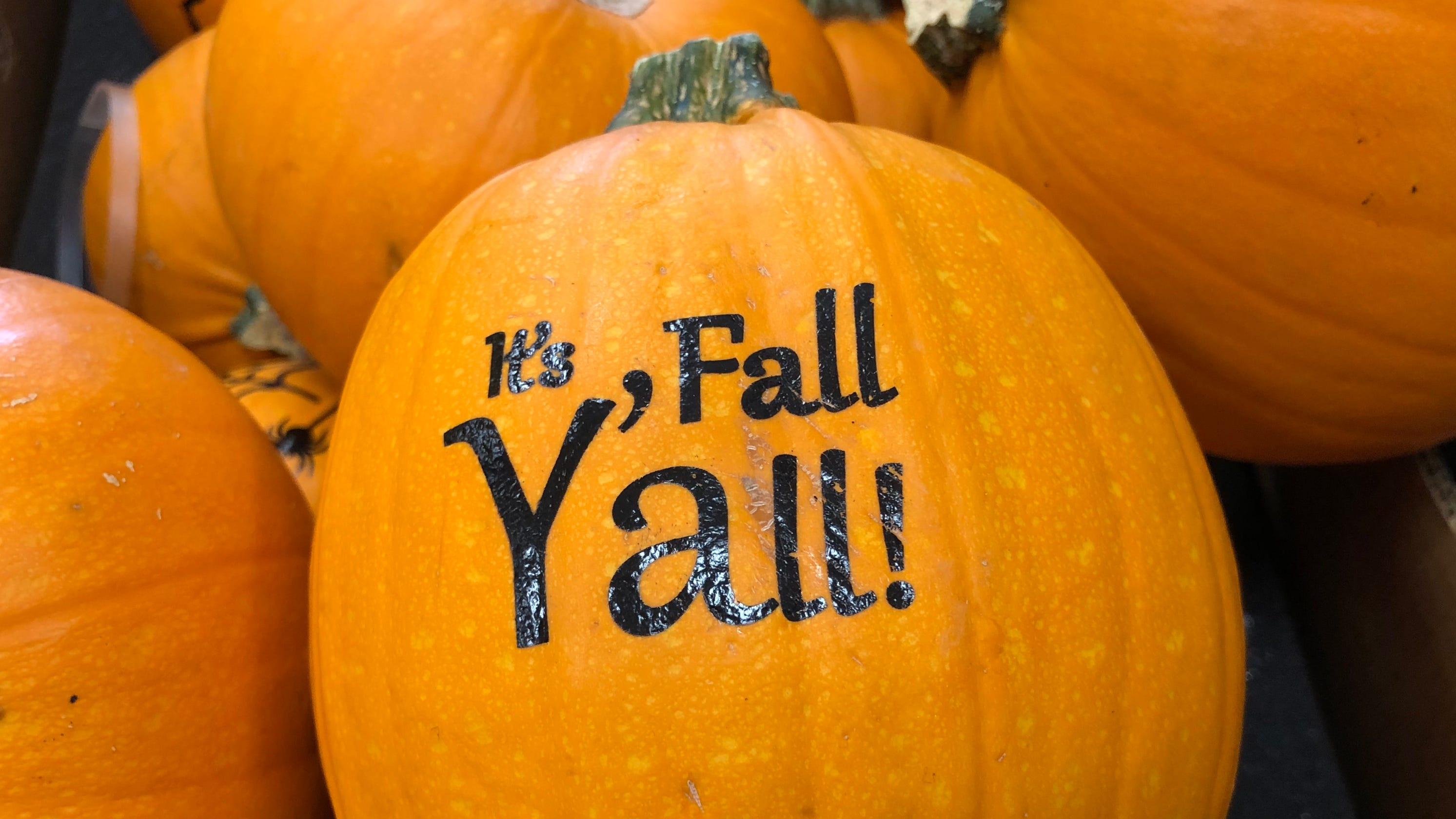 The calendar says it's fall, but do you really want that pumpkin spice latte hot?