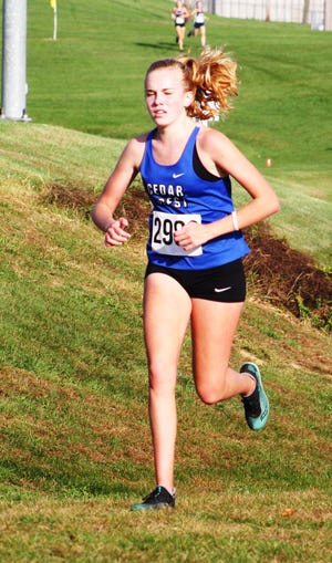 Cedar Crest's Gwyneth Young added another Lancaster-Lebanon League meet medal to her collection on Wednesday, placing fourth  in a time of 19:49.9