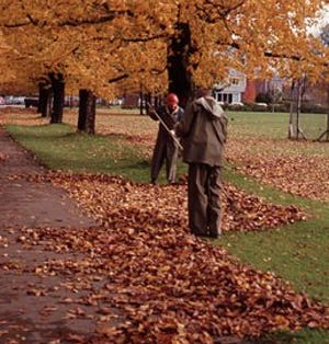 Hawley Council approved leaf burning, Nov. 1- Jan. 1, daytime only and not in the street. Fires must be attended. (Generic scene; not in Hawley)