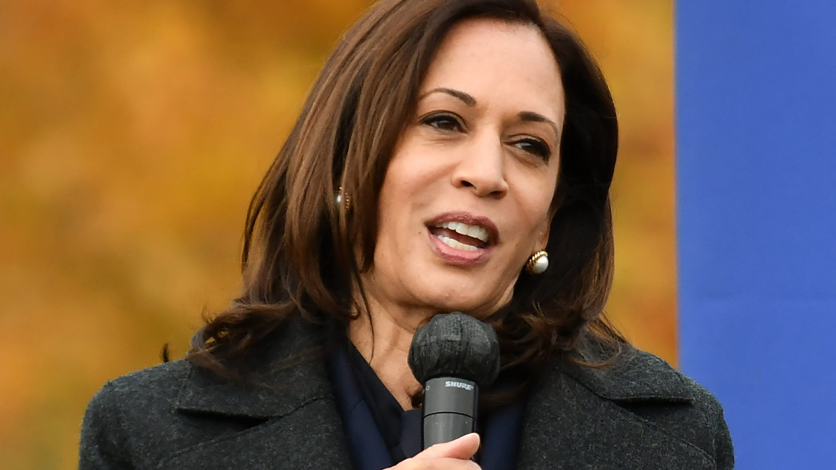 Democratic Vice President Kamala Harris will visit Detroit's TCF Center on Monday for events.