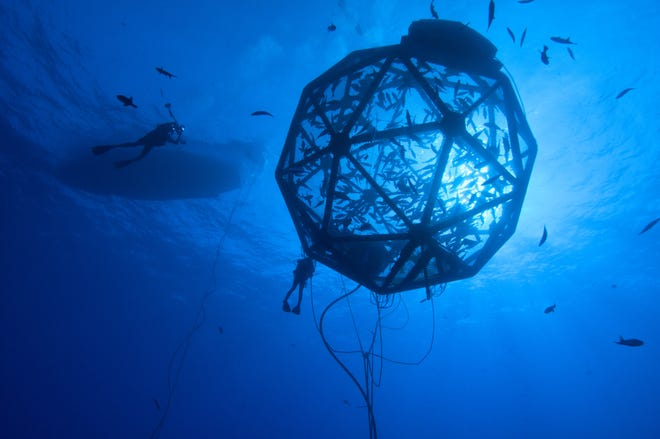 A diver approaches a demonstration of a commercial fishing net pen by Ocean Era in Kona, Hawaii. The company is seeking a federal permit so it can also conduct a demonstration of the technology in the Gulf of Mexico about 45 miles southwest of Sarasota.