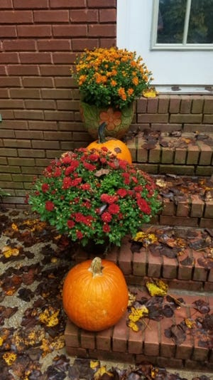 Autumn leaves have fallen on the front steps, and the orange pumpkins and the colorful mums make a beautiful fall arrangement on the front step of the Benefield home.