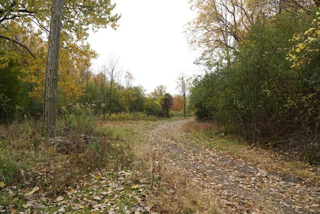 Home developer Mike Heath is hoping to build about six home sites at this section of land along Ann Arbor Trail in Westland.