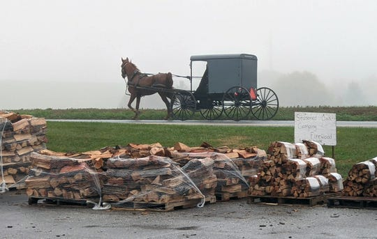 An Amish buggy works its way north on Route 74 past the Country View Farm Market between Brogue and Airville on October 26, 2020.