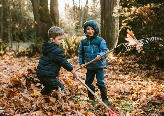 Curbside fall leaf pick-up will take place during the week of November 23-28.