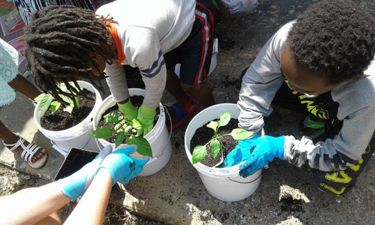 Children planting seedlings at the The WiseTies CoGardens in Memphis.