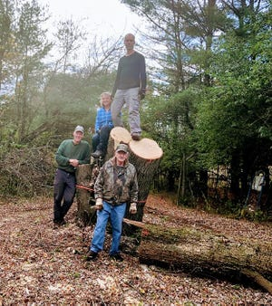 The clean-up crew for the old maple includes from left, Steve, Sue, Paul and Jerry's brother Don in front.