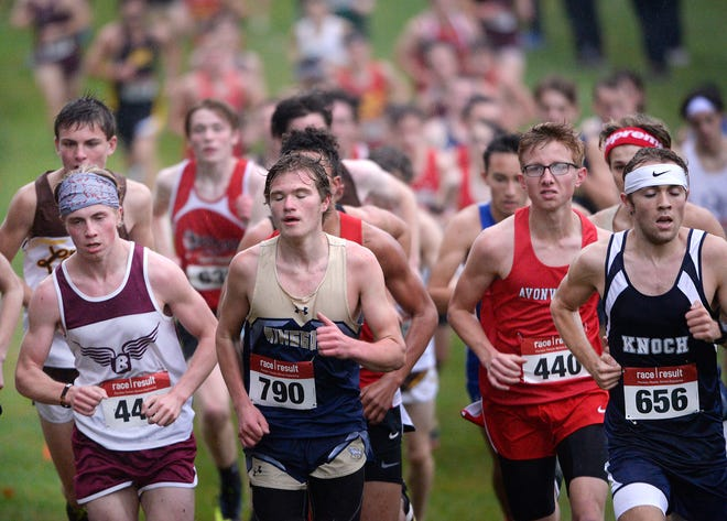 Beaver's Will Lamb, far left, climbs a hill during the Class AA boys WPIAL cross country championships Wednesday at White Oak Park.  Lamb placed 5th.