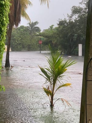 Flooding on North Flagler Drive has become an increasingly common site over the past 20 years.