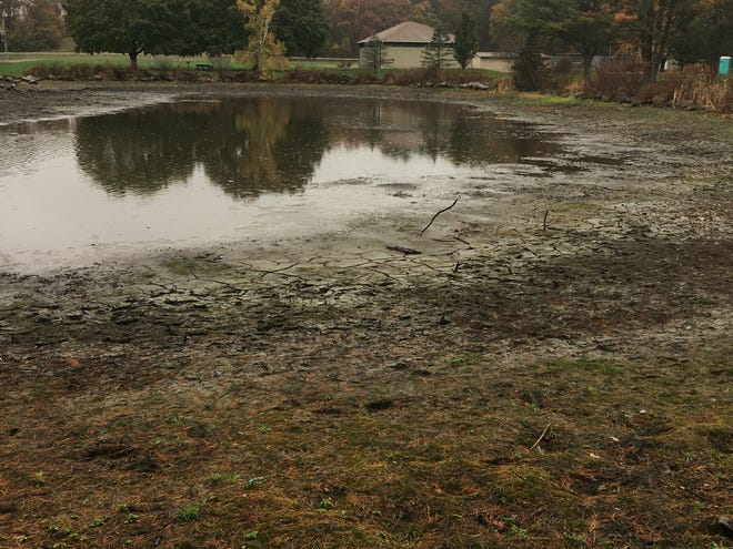 Owen Bell Park Pond in Killingly after weeks of drought conditions.