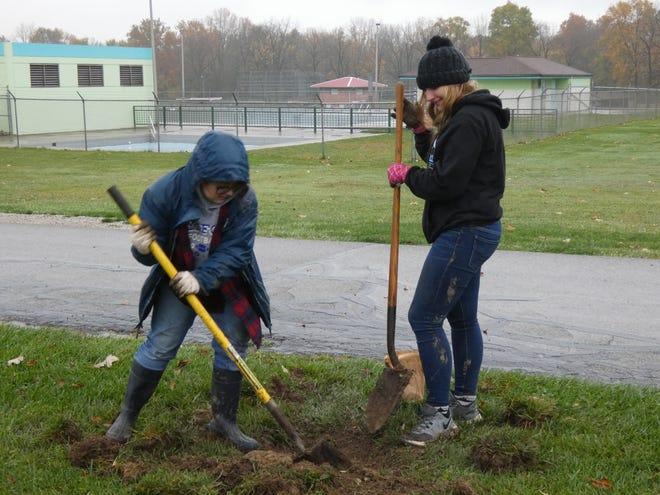 Wynford students Miya Kinn, left, and Natalie Stover dig a hole for daffodil bulbs in a light rain Tuesday at Aumiller Park.
