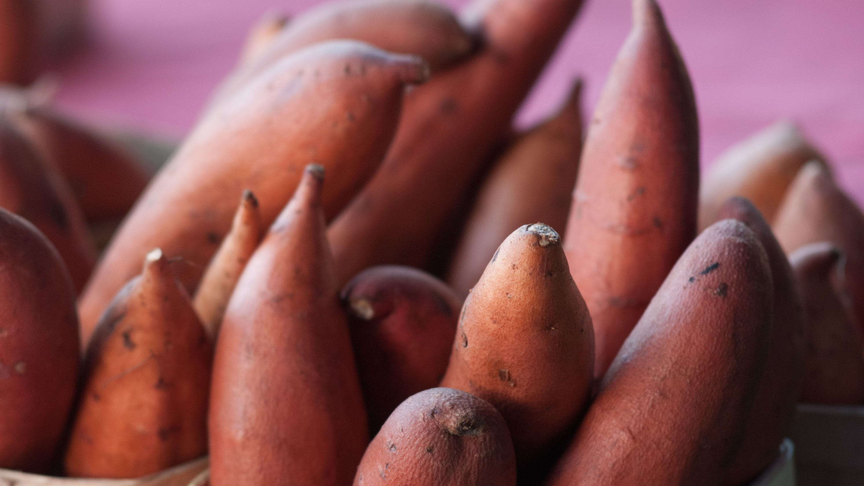Are yams and sweet potatoes the same? 5 questions answered about the favorite fall food