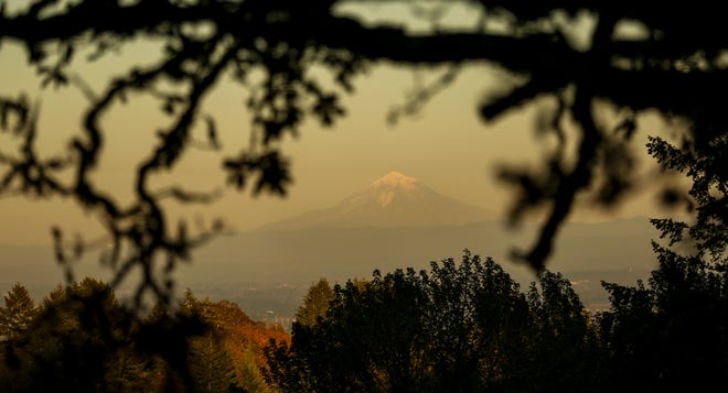 Mt. Hood is framed by trees at sunset near Eagle Crest Road NW in West Salem.