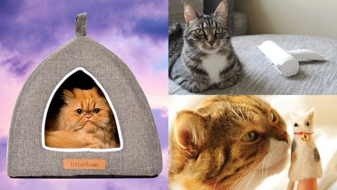 These are the best cat gifts of 2020