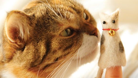 Best cat gifts: Crafting with Cat Hair