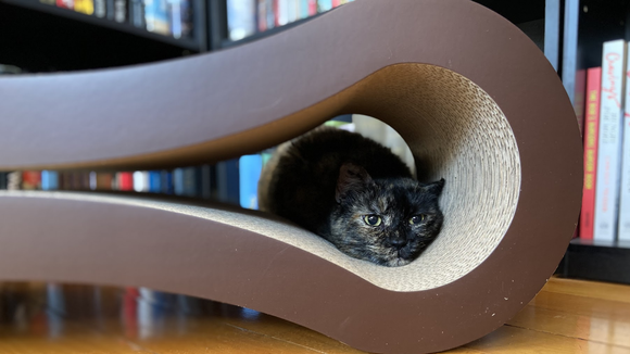 Best cat gifts: PetFusion Ultimate Cat Scratcher Lounge