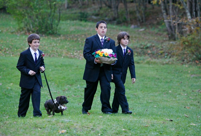 With more pets being part of weddings, the idea of a wedding-day pet planner and attendant has started to become popular.