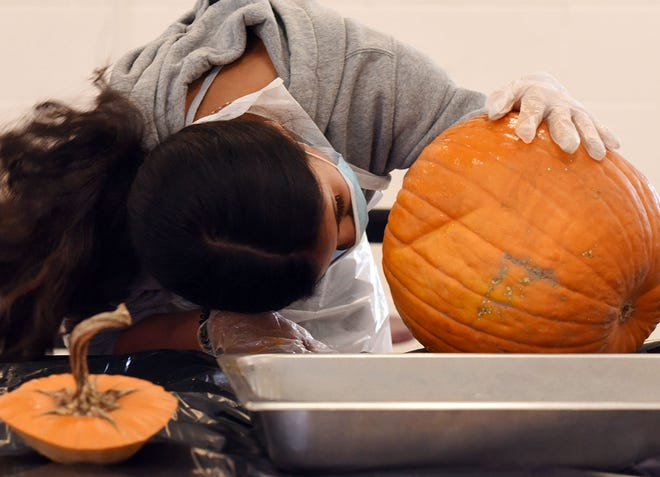 Jackie Lopez, a seventh grader at Woodington Middle School, looks for stray seeds after cleaning out her pumpkin Tuesday during a project funded by a grant from the Farm to School Coalition of North Carolina.