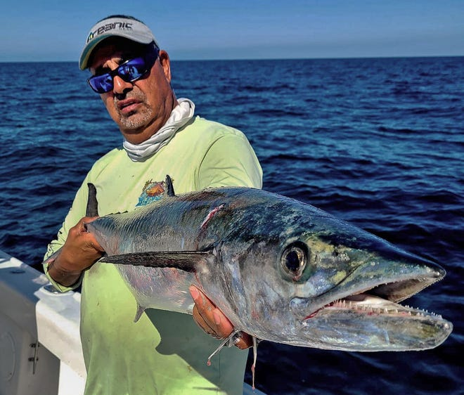 Capt. Julio Lima of St. Petersburg caught this smoker-size kingfish while fishing with Capt. Glen F. Taylor off St. Pete beach this week.