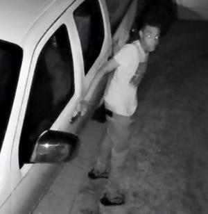 Surveillance footage of suspect in theft in Adams Landing