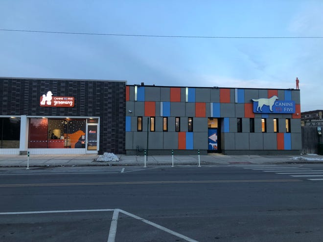 Canine to Five dog day care, boarding and grooming services in Detroit.