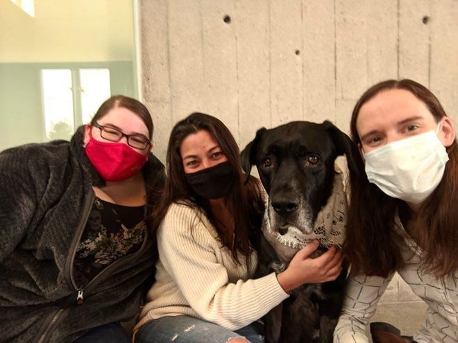 Ruthie the black lab is pictured with, from left, Miranda Buseman, Rebecca Walton and Jessica Griffith at the Iowa State University College of Veterinary Medicine.