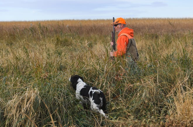 Scott Saxon and his dog, Archie, hunt during the pheasant season opener on Oct. 17, near Olivet, S.D.