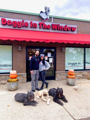 Todd and Wendy Luczak with their three dogs in front of their business, Doggie in the Window, in Berkley. The business is now starting to see more dogs return to day care, but is slower than previous years due to the pandemic.