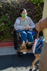 Indio Nursing and Rehabilitation Center resident Priscilla Alvarez watches a pet parade organized by members of the Women's Club of Indio outside the nursing home in Indio, Calif., on Saturday, October 31, 2020.