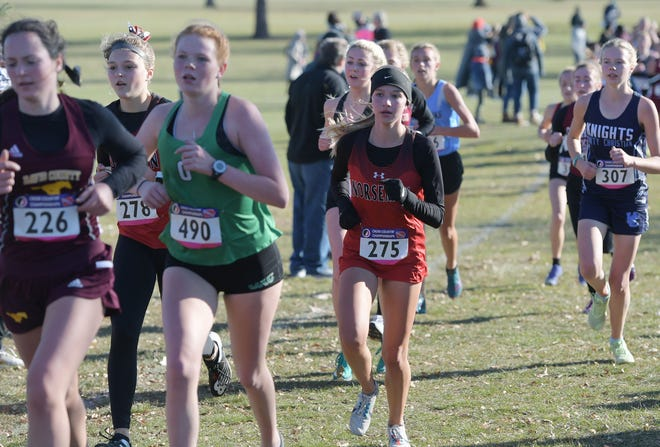 Roland-Story's Makenna Carlson (275) and Reece Johnson (278) run during girls' Class 2A race on the second day of state cross country competition Saturday at Kennedy Park in Fort Dodge.