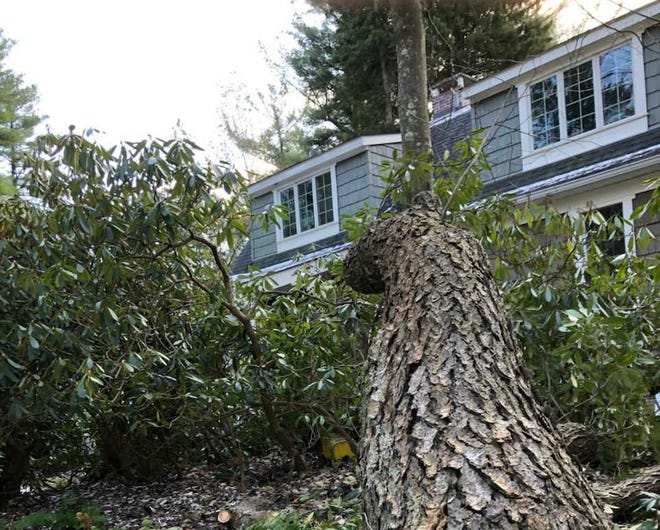 Strong winds warranted a National Weather Service advisory for eastern Pennsylvania and surrounding states on Monday, Nov. 2. Many residents have experienced power outages and property damage, including this reader's home in Naomi Lakes.