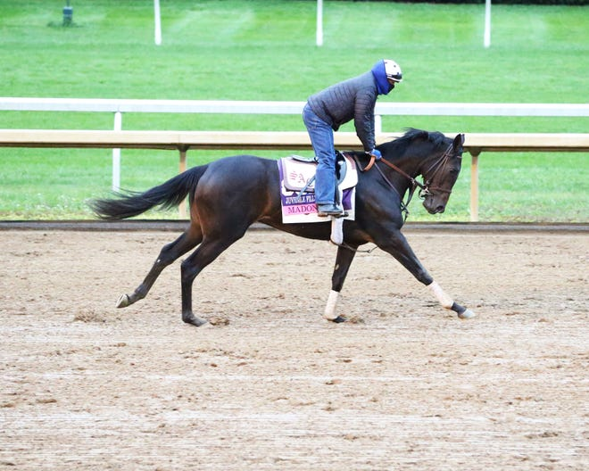 Trained by Simon Callaghan, Madone is a contender for Friday's Breeders' Cup Juvenile Fillies Turf at Keeneland.