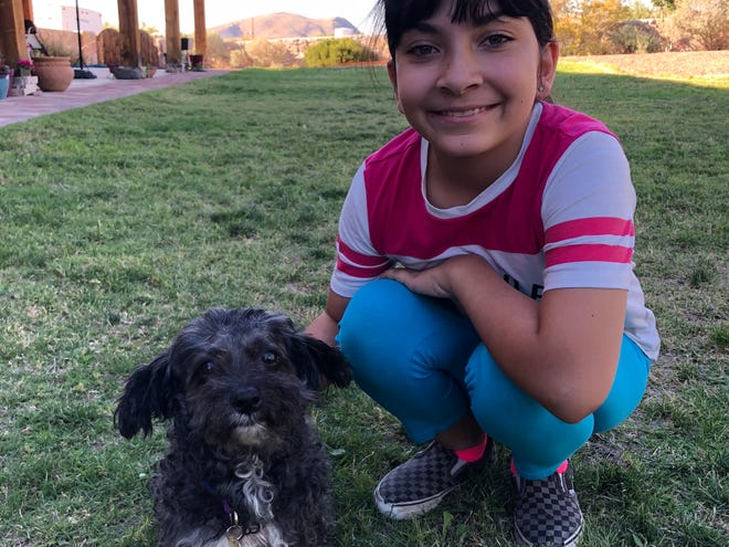 "Anelise Elmquist, 12, wrote a book, ""Cooper's Tale: A COVID-19 Story from A Dog,"" based on her dog's reaction to his owners working and learning from home."