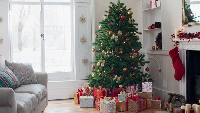Get a tree shipped right to your door this year.