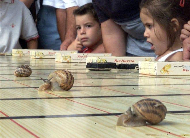 Children in Spain watch snails race in 2000.