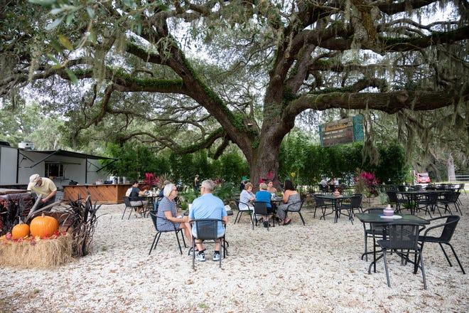 The farm-to-table bistro offers outdoor dining under a giant oak tree.