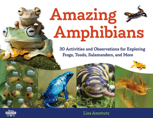 "Lisa Amstutz, author of ""Amazing Amphibians,"" and Mary Kay Carson will participate in the Working with Nonfiction EducatorÕs Conference on Wednesday at 4Êp.m. and the Nonfiction Kids Book Showcase on Sunday at 11Êa.m. as part of the 2020 Virtual Buckeye Book Fair."
