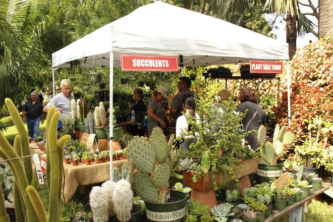 Plant-a-Palooza,the organization's annual fall plant sale returns to Mounts from 9 a.m. to 4 p.m. Saturday and 9 a.m. to 3 p.m. Sunday.