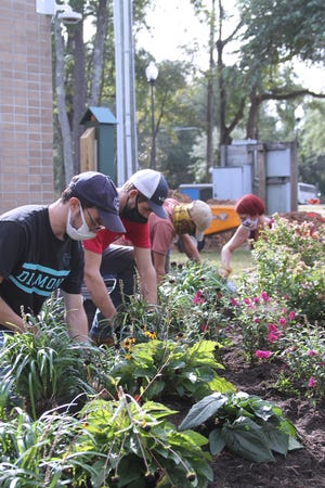 Cape Fear Community College landscape gardening students installed pollinator garden for Maides Park afterschool program.