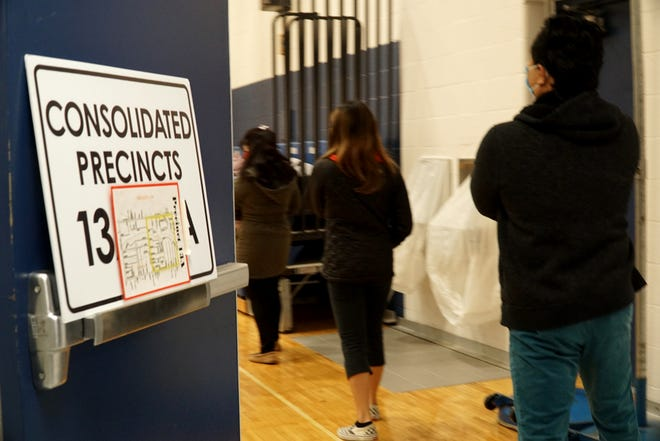 A small line forms outisde the gym of Livonia's Riley Elementary on Nov. 3, 2020.