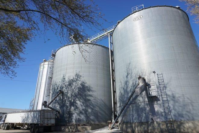 Grain bins at the Roger Rebout & Sons farm.