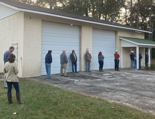 Grays voters wait in line Tuesday afternoon.