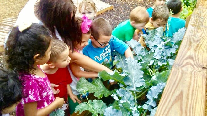 Children at Harmony Place in Asheboro tend to their vegetable garden.